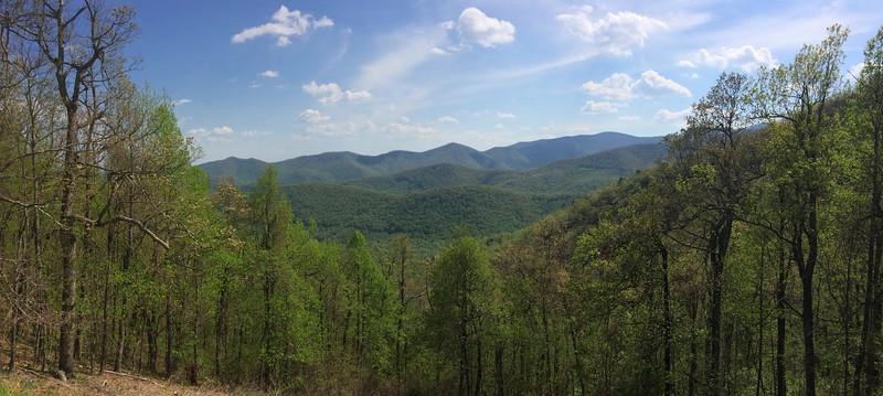 Stony Bald View - 3,750'