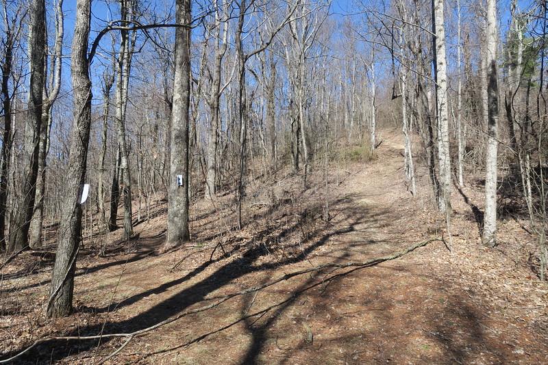 Trombatore Trail - 3,450'
