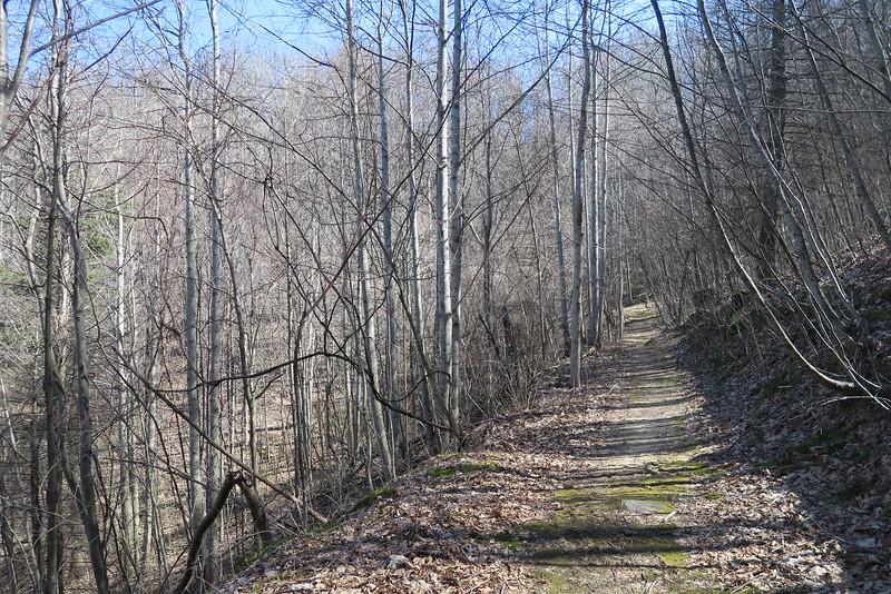 Trombatore Trail - 3,200'