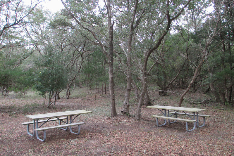 Alongside the trailhead is a nice, small picnic area which offers some well-appreciated shade in the summer...