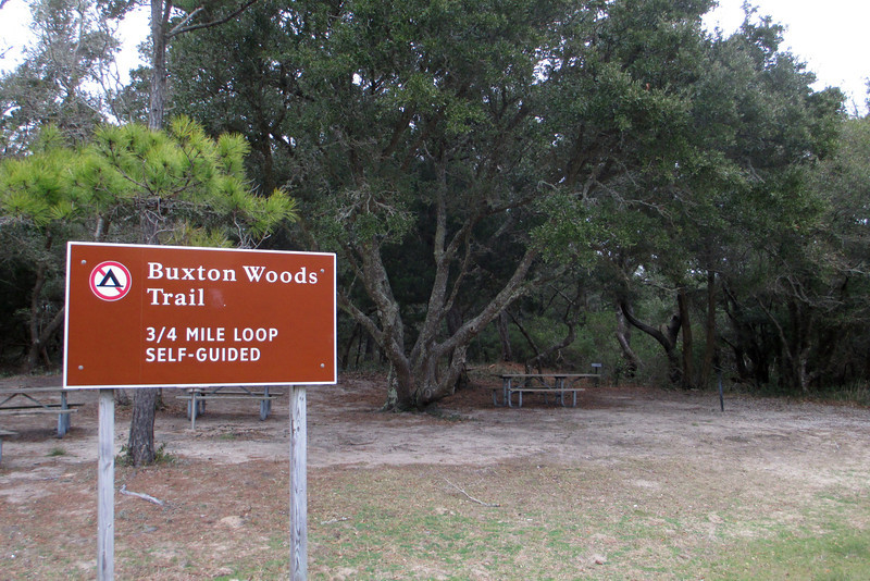 Buxton Woods Trailhead