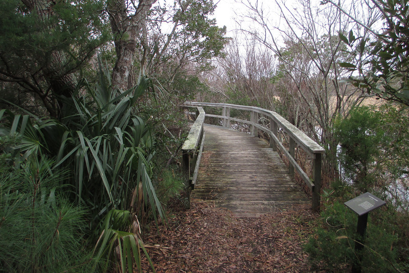 A convenient boardwalk helps pass a wetter stretch of trail along the Sedge...