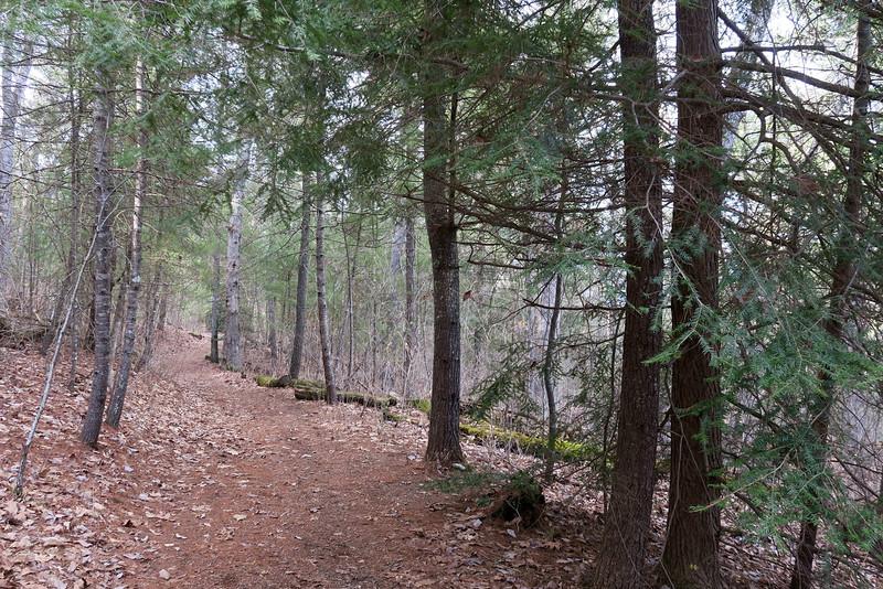 Memminger Trail