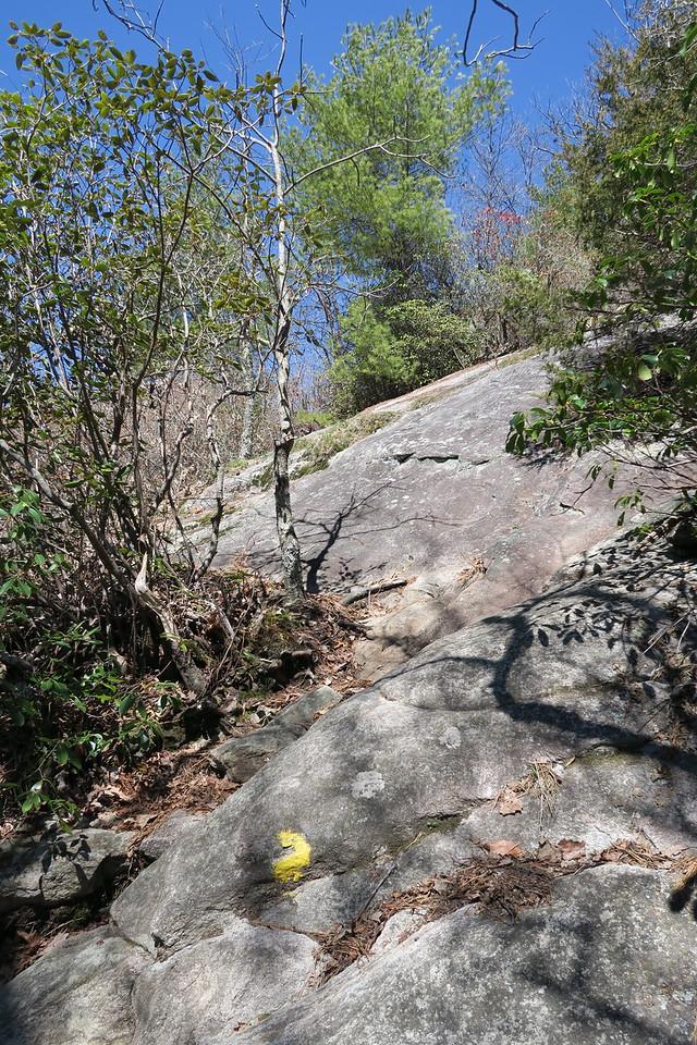 Rocky Mountain Trail -- 3,850'