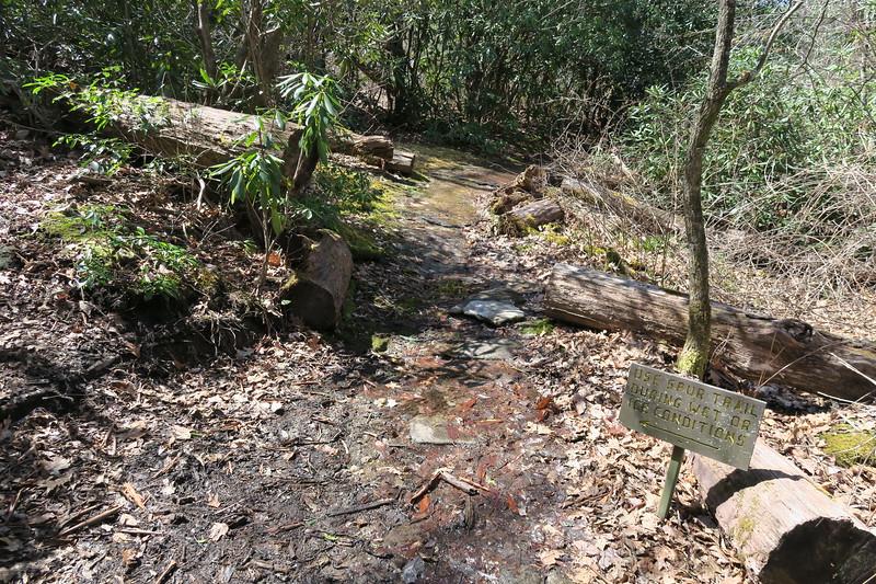 Chattooga Ridge Trail -- 3,650'