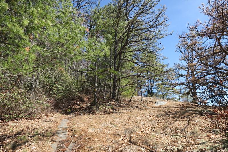 Rocky Mountain Trail -- 4,100'