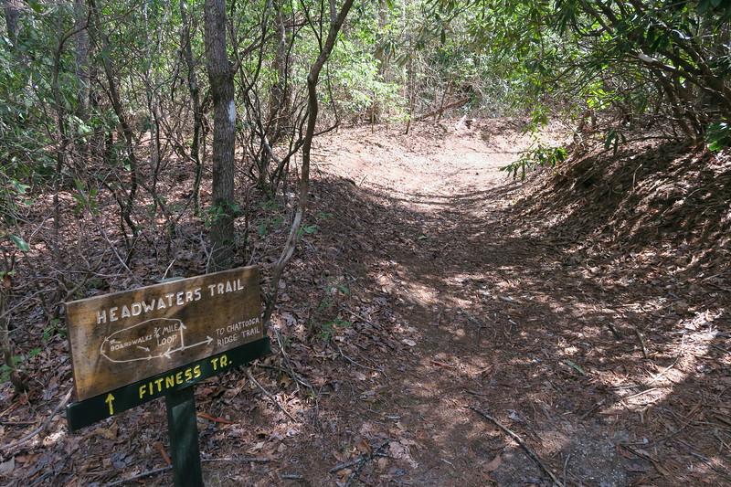 Headwaters Trail -- 3,500'