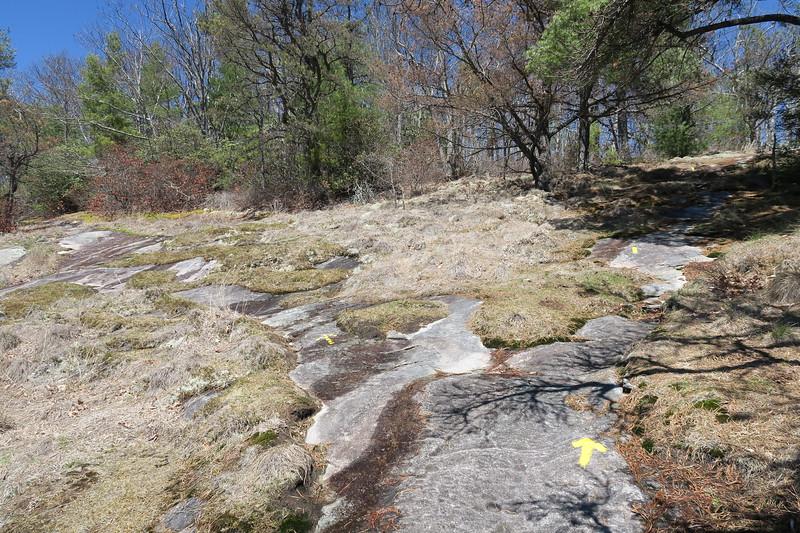 Rocky Mountain Trail -- 4,300'