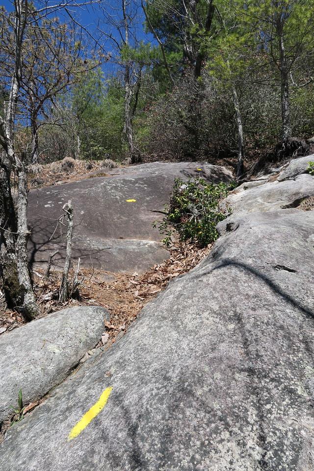 Rocky Mountain Trail -- 3,920'
