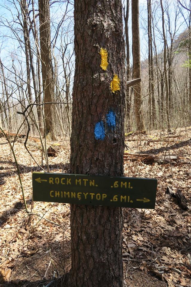 Chattooga Ridge-Rocky Mountain-Chimneytop Trail Junction -- 3,740'
