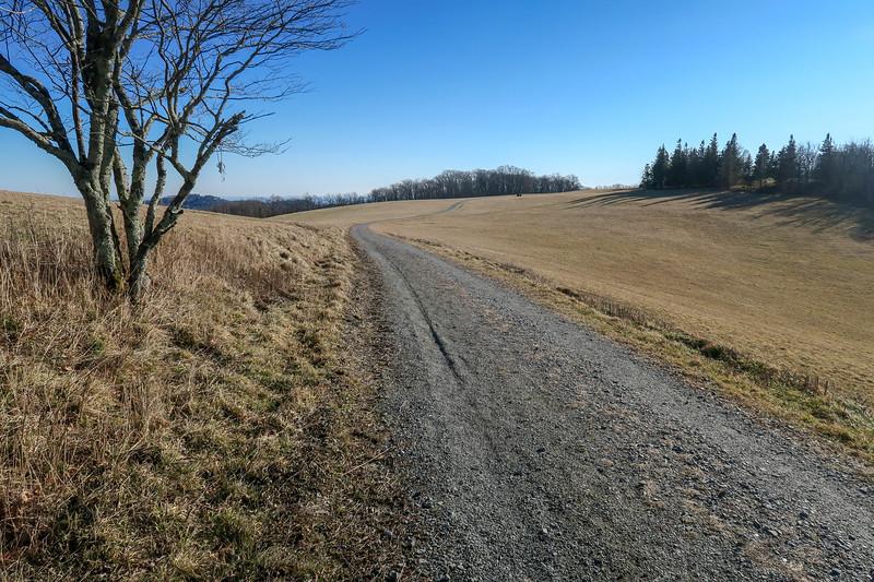 Flat Top Road -- 4,150'