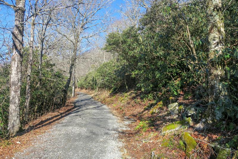Flat Top Road -- 4,380'