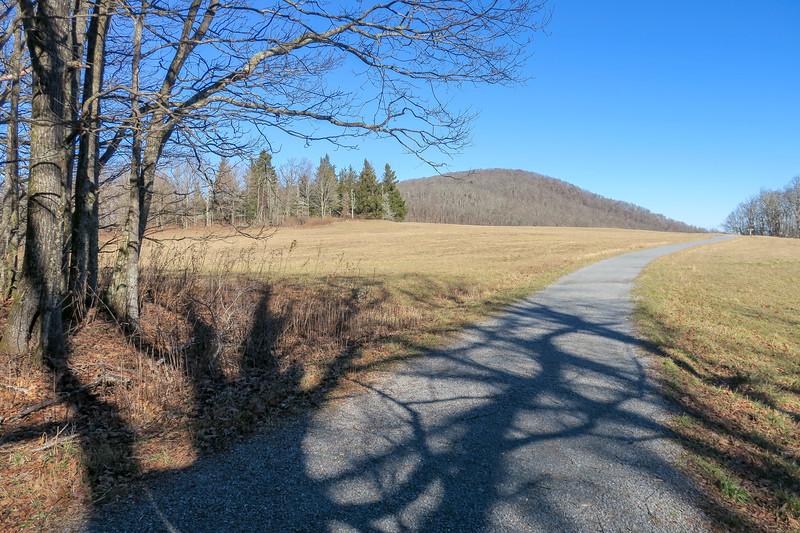 Flat Top Road -- 4,160'