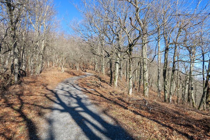 Flat Top Road -- 4,460'
