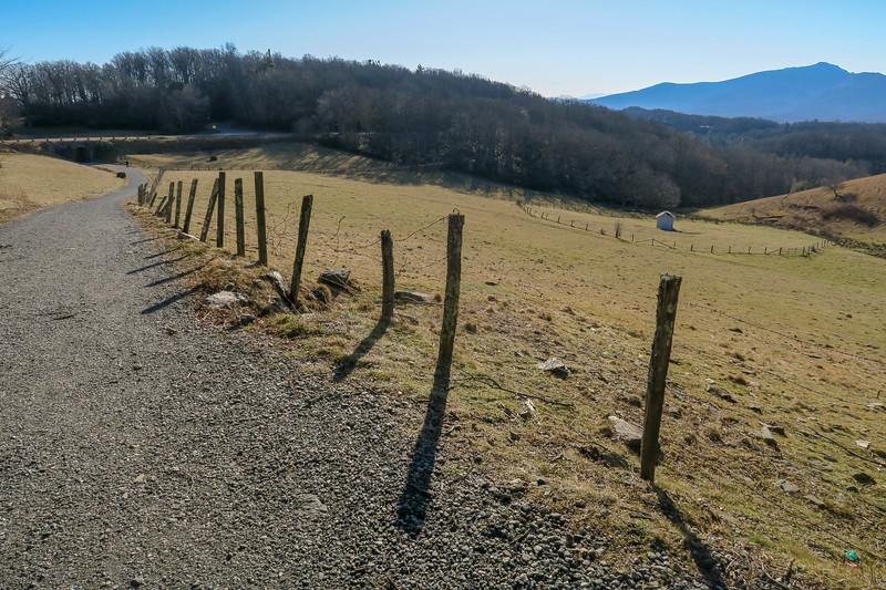 Flat Top Road -- 4,020'