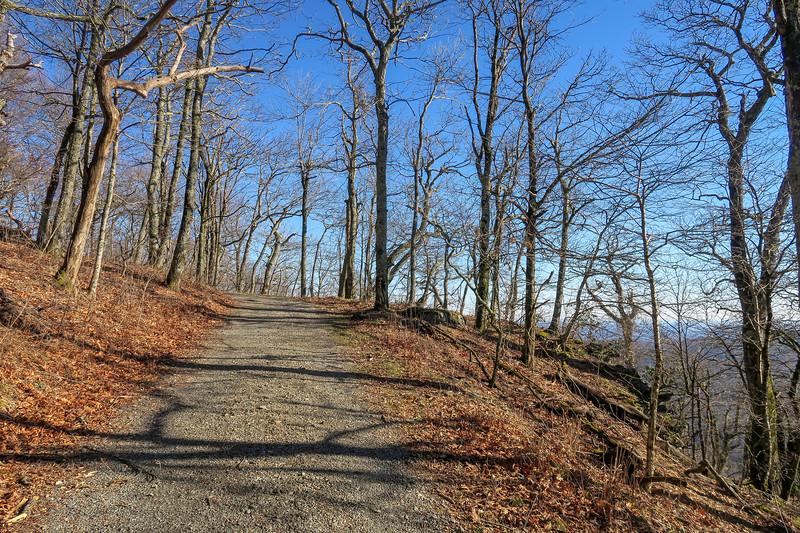 Flat Top Road -- 4,520'