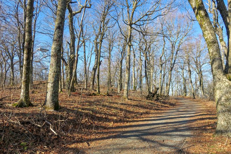 Flat Top Road -- 4,540'