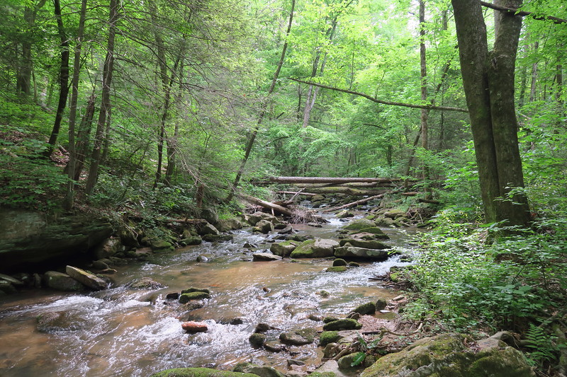 Little Cove Creek Route