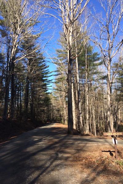 Conservation-Lake Julia Road Junction
