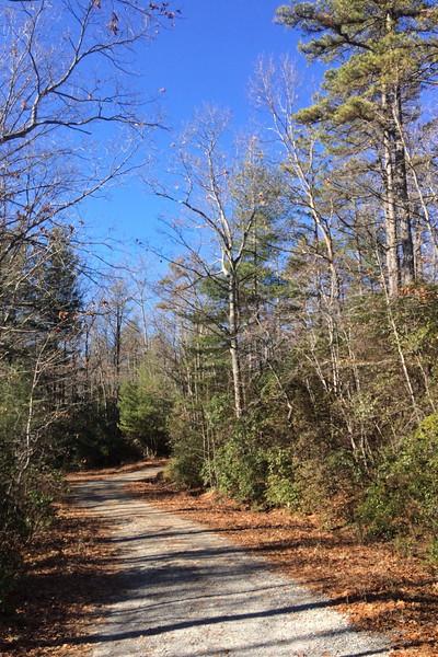Fawn Lake Road