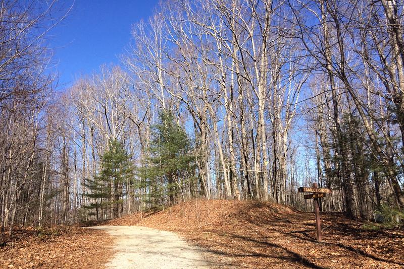 Fawn Lake Road-Scarlet Oak Trail Junction