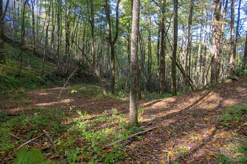 Bursted Rock Spur-Foothills Trail Junction -- 2,900'