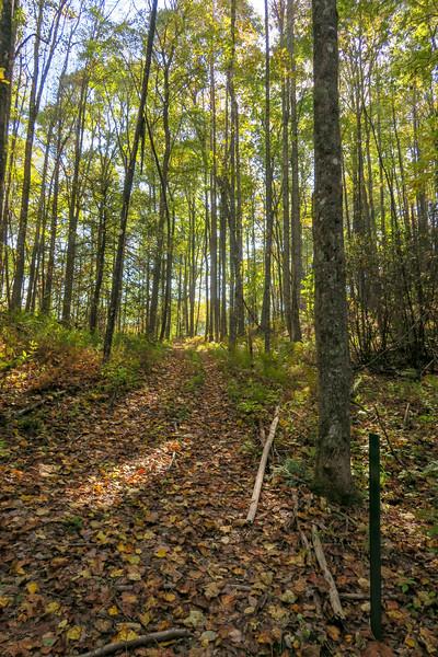 Foothills Trail-Bursted Rock Spur Junction -- 2,900'