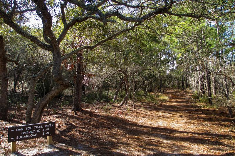 Oak Toe Trail