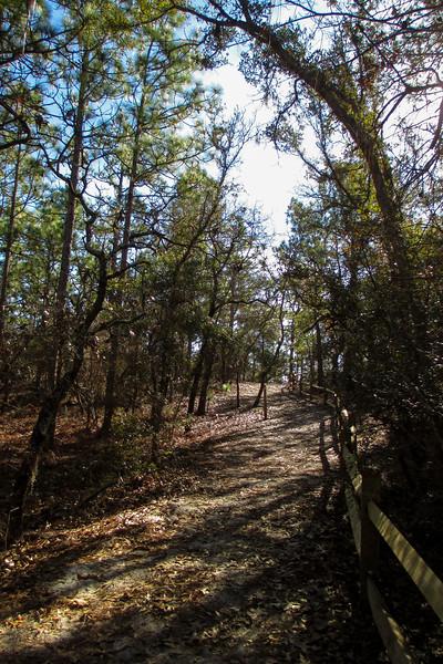Sugarloaf Trail