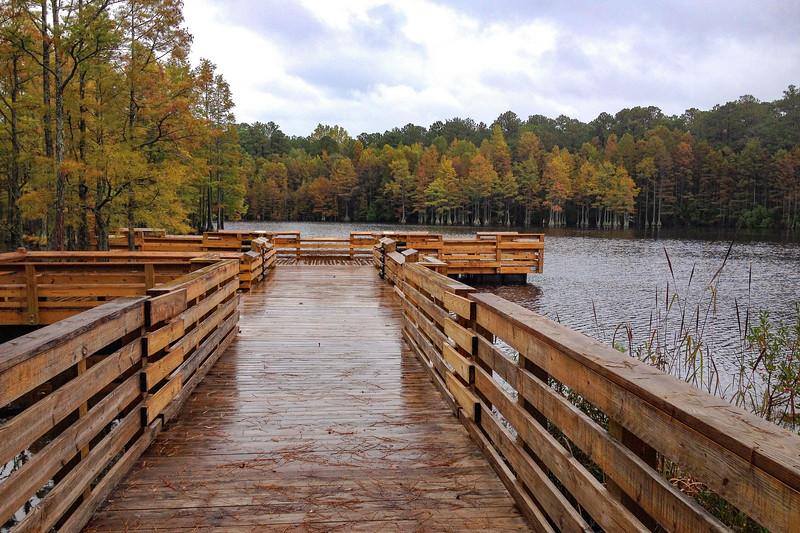 Carvers Creek State Park (2.0 miles; d=2.10)