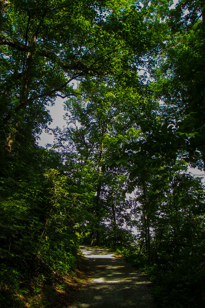 Hickory Nut Falls Trail