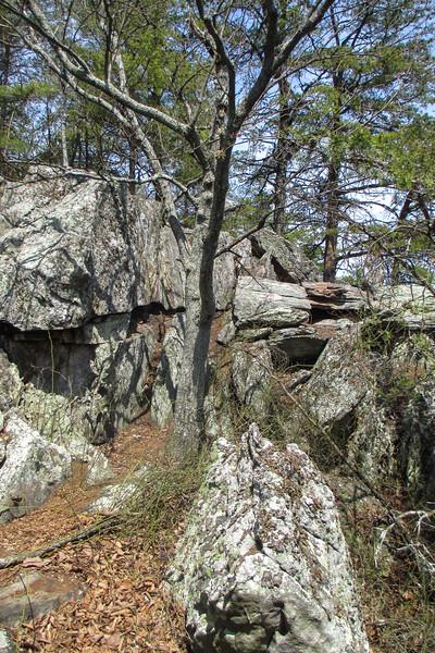 Crowder's Mountain Cliffs - 1,520'