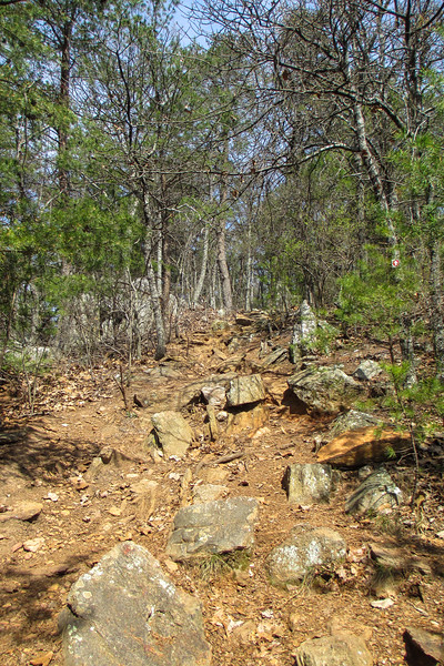 Rocktop Trail - 1,250'