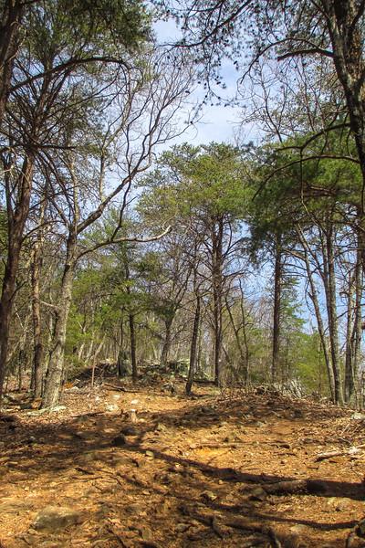 Rocktop Trail - 1,200'