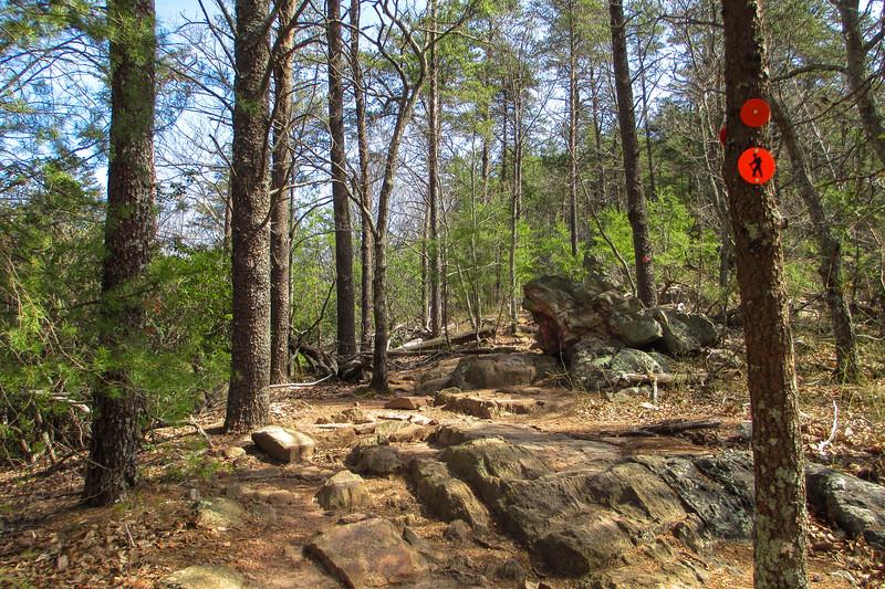 Pinnacle Trail - 1,070'