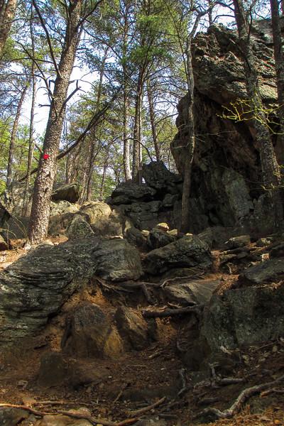 Rocktop Trail - 1,040'