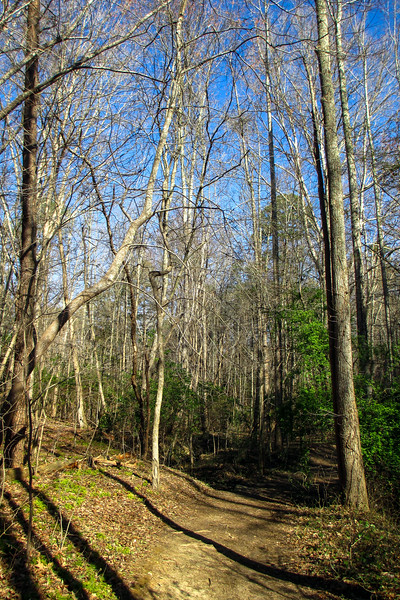 Turnback Trail - 865'