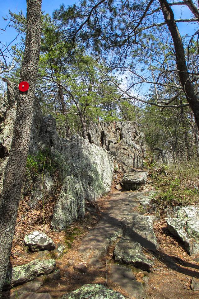 Rocktop Trail - 1,300'