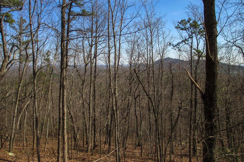 Pinnacle Trail - 1,200'