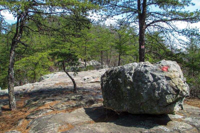 Rocktop Trail - 1,390'