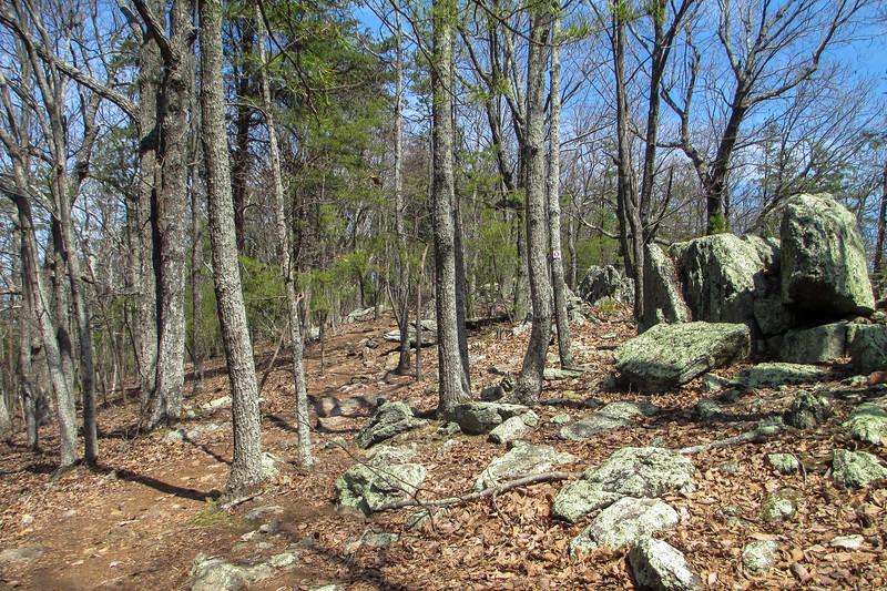 Rocktop Trail - 1,385'