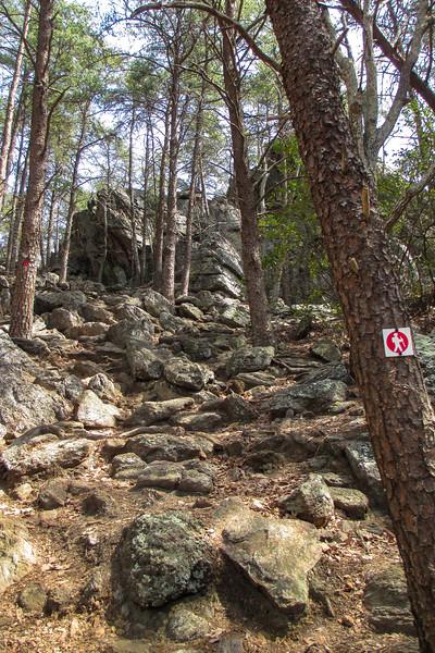 Rocktop Trail - 1,000'