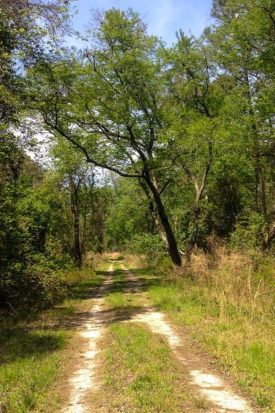 Laurel Ditch Road