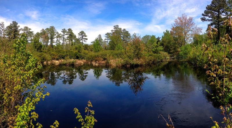 Dismal Swamp State Park  (17.0 miles; d=17.04)