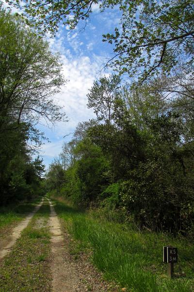 Kim Saunders Trail