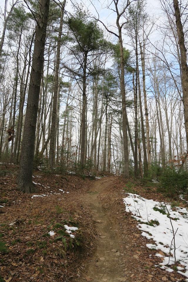 Hilltop Loop Trail