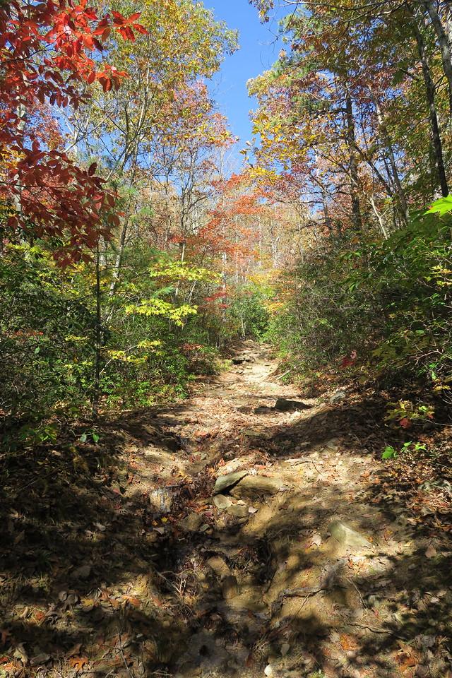 Stone Mountain Trail --  3,200'