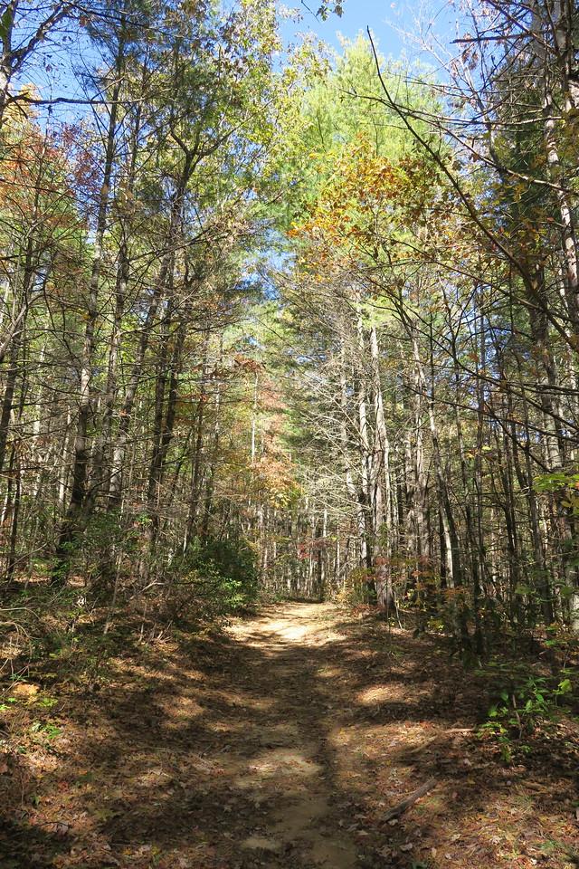 Stone Mountain Trail --  3,000'