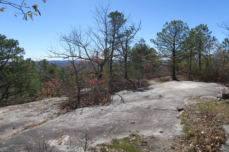 Stone Mountain Summit -- 3,650'