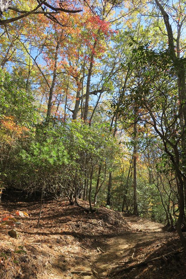 Rocky Ridge Trail --  2,620'